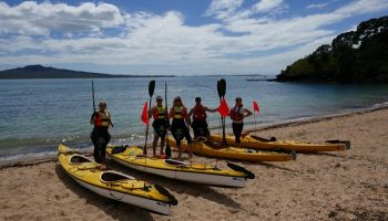 Devonport and North Head Kayak Adventure - Morning Tour
