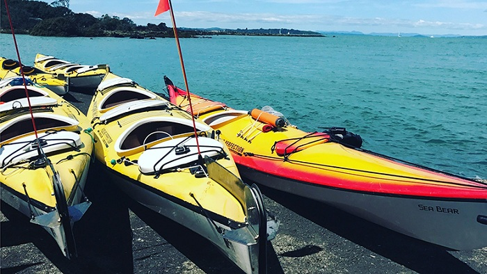 Auckland Harbour Kayaking