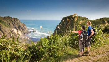 Auckland Guided Wilderness Walk
