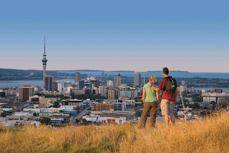 Auckland Highlights Half Day Luxury Tour