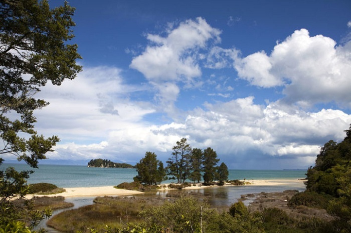 Abel Tasman & Golden Bay in One Day