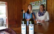Half Day Moutere Hills Wine Tour