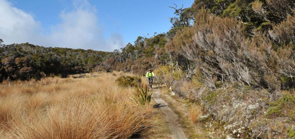 Heaphy Track 4 Day Mountain Bike Trip