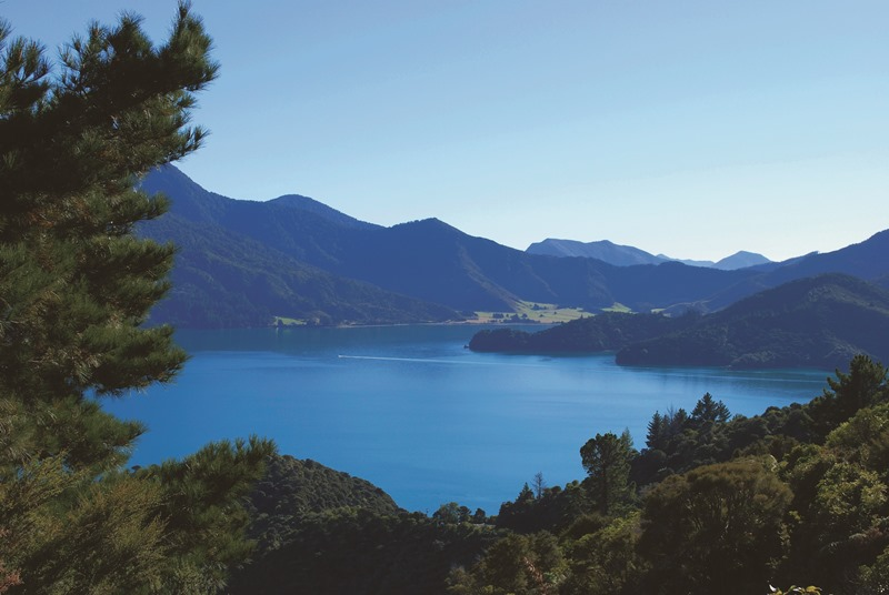 7 Day Marlborough Sounds and Abel Tasman Trails