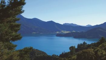 7 Day Queen Charlotte Sounds and Abel Tasman Hike