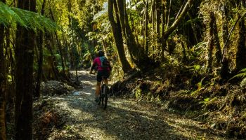 West Coast Cycle Tours