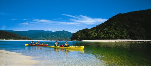 Beaches, Bays and Seals Sea Kayaking