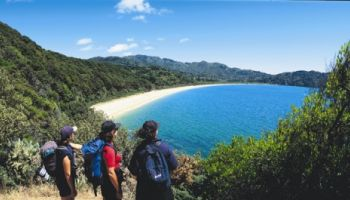 3 Day Abel Tasman Walking Break