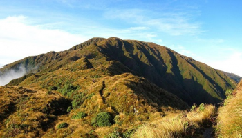 Blue Range Hut Day or Overnight Walk: Wairarapa