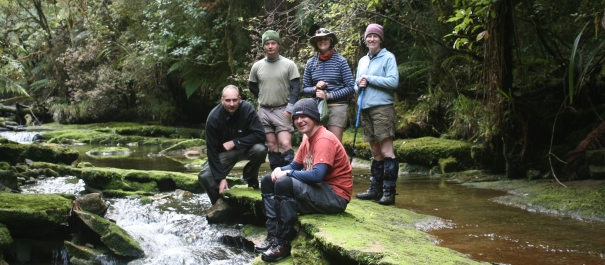 Custom Hiking Group Tours