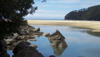 21 Day New Zealand Great Walks in a Day
