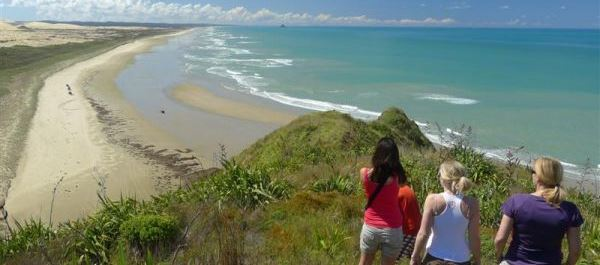 5 Day Northland Discovery Hiking Tour