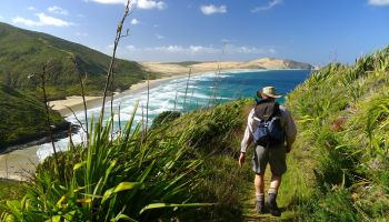 5 Days Northland Discovery Hiking Tour