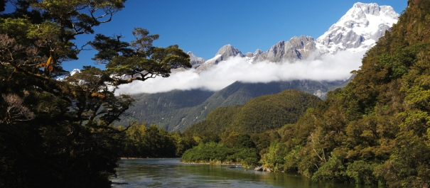 Pyke River, the Darran Mountains and Mount Madeline Hollyford Track Guided Walk
