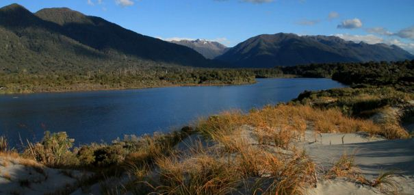 Hollyford Track Guided Walk Fiordland National Park New Zealand