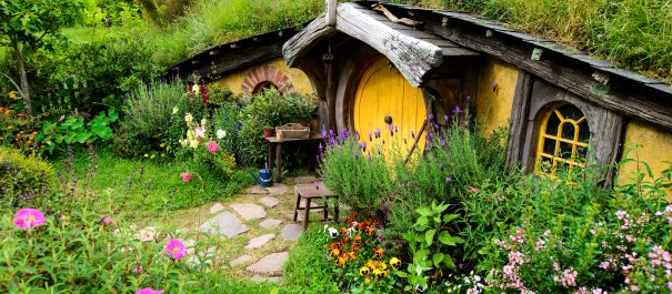 Hobbiton Private Tour