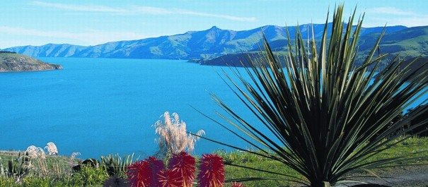 4 Day Banks Peninsula Self Guided Bicycle Tour