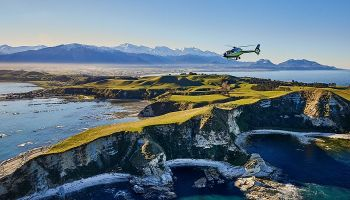Kaikoura Whale Watch Helicopter Ocean Safari (40 min)