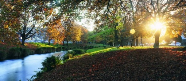 Autumn in Hagley Park,Christchurch