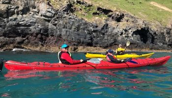 Akaroa Guided Kayak Tour from Christchurch