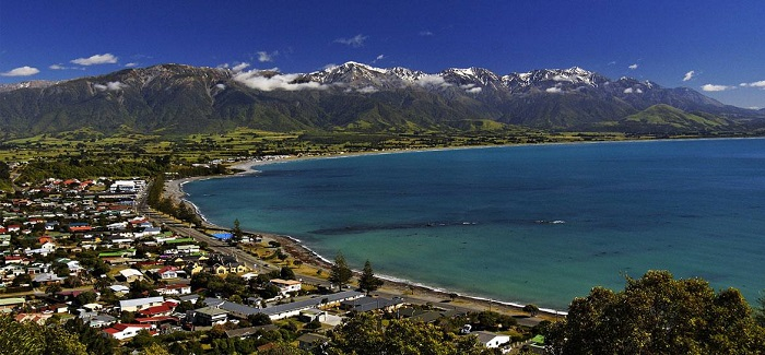 Private Kaikoura Full Day Tour