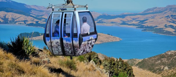 9 Day Southern Explorer Self Drive from Queenstown