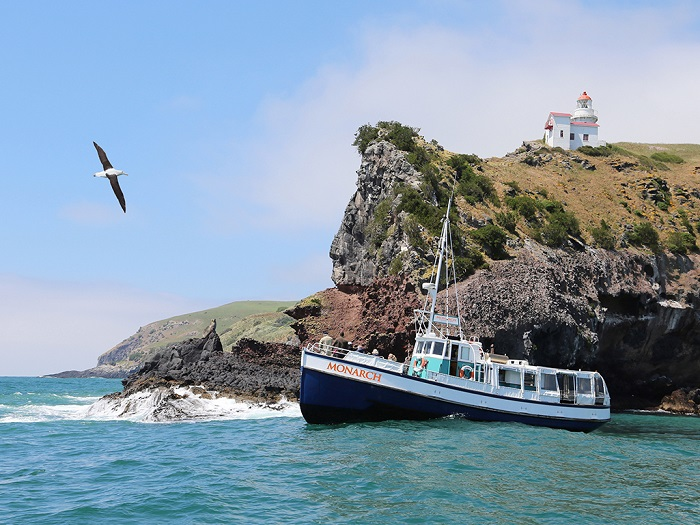 Monarch Wildlife Cruises from Wellers Rock