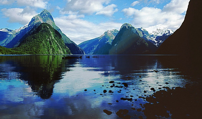 Milford Sound Discovery Small Group Tour + Cruise
