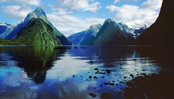Milford Sound Discovery Small Group Tour + Add Cruise