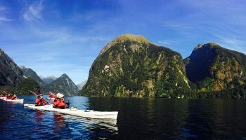 Doubtful Sound Kayak Adventure