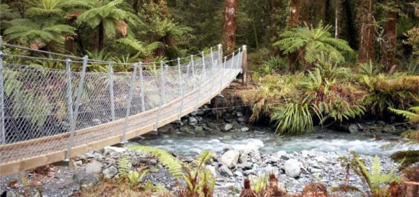 Hollyford Track Freedom Plus Walk