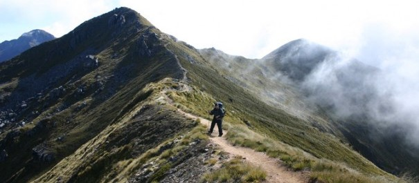 Kepler Track Independent Walk Package