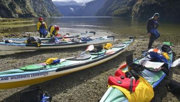 Doubtful Sound Sea Kayaking