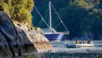 Milford Mariner Overnight Cruise from Te Anau
