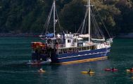 Milford Wanderer Overnight Cruise from Te Anau