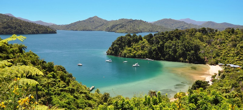 3 Day Queen Charlotte Track Upgrade Independent Walk