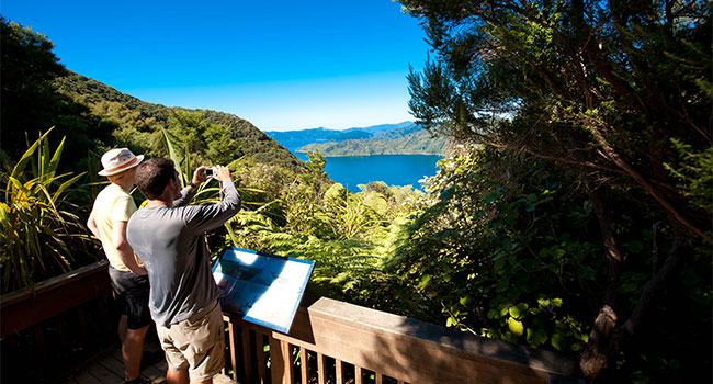 4 Day Upgrade Queen Charlotte Track Lochmara Lodge Independent Walk