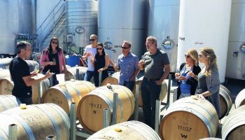 Full Day Marlborough Winemaker's Tour