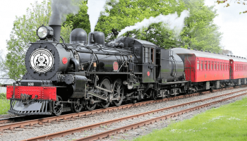 Marlborough Flyer Steam Train Tour from Picton