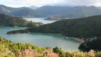 5 Day Premier Queen Charlotte Track Lochmara Lodge Independent Walk