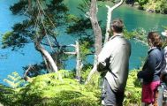 5 Day Standard Queen Charlotte Track Portage Resort Independent Walk