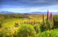 Full Day Wine Gourmet and Scenic Delights Tour from Blenheim