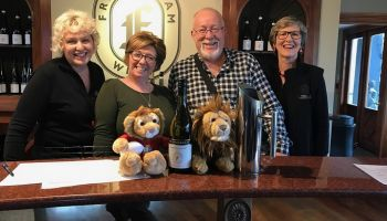 Private Winter Wine and Scenic Small Group Tour from Blenheim