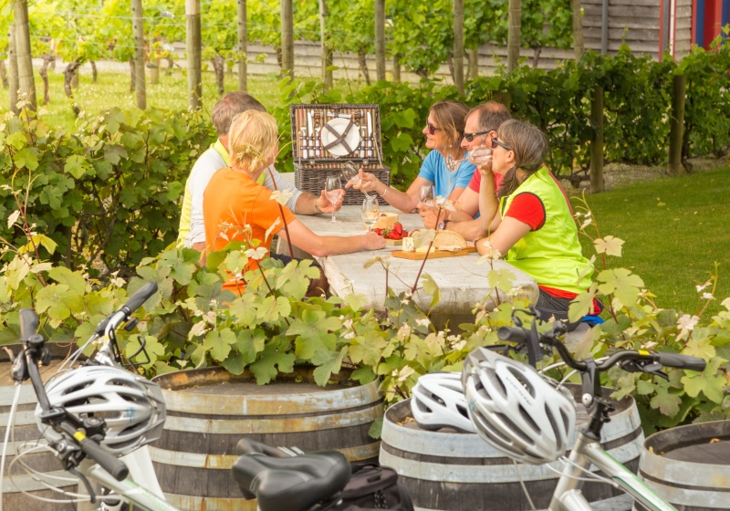 1 Day Moutere Winery and Artisans Bike Tour
