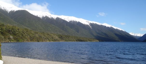 Nelson Lakes Nature Recovery