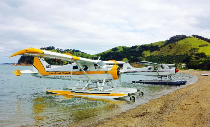 Waiheke Island Highlights Tour