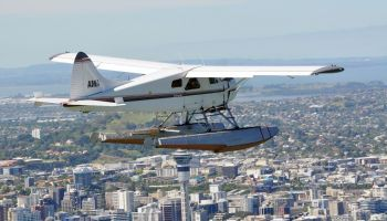 Rangitoto and City Scenic Seaplane Flight