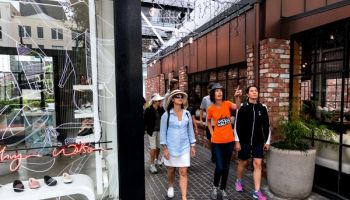 Private and Custom: When in Auckland Walking Tour (2-3 hr)