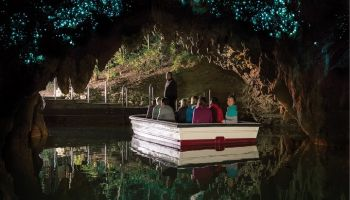 Hobbiton and Waitomo Caves Day Tour from Auckland