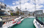 Explore Auckland Small Group Tour